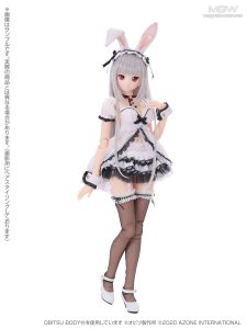 Iris Collect Rino Tsukiyo no Maid Usagi san by AZONE International 2