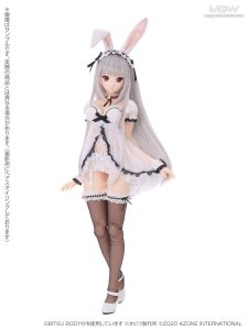 Iris Collect Rino Tsukiyo no Maid Usagi san by AZONE International 3